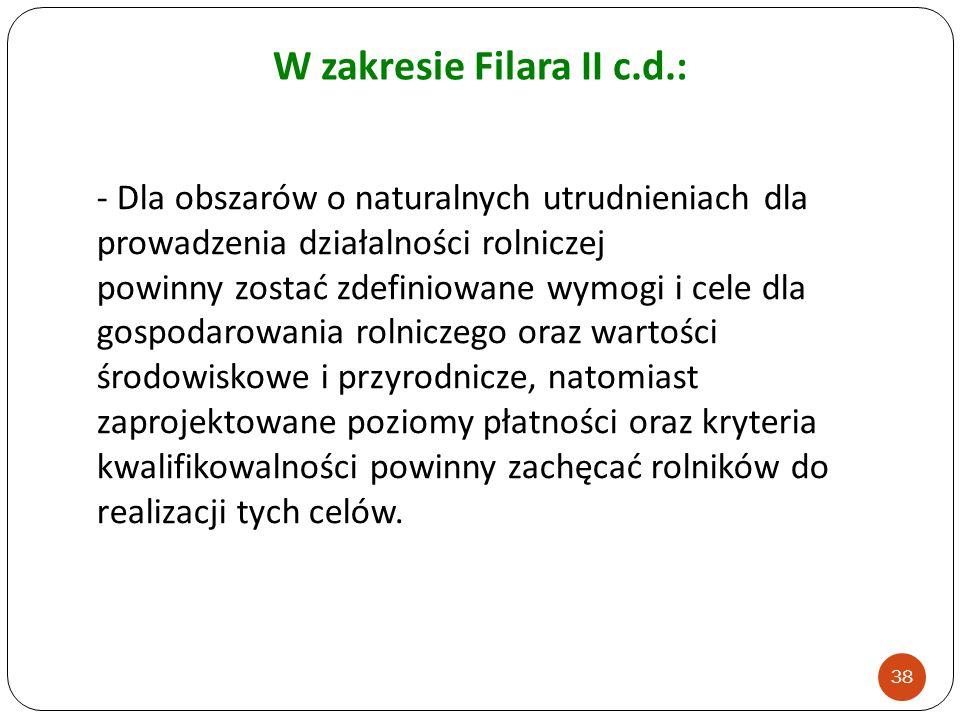 W zakresie Filara II c.d.: