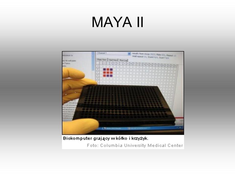 MAYA II