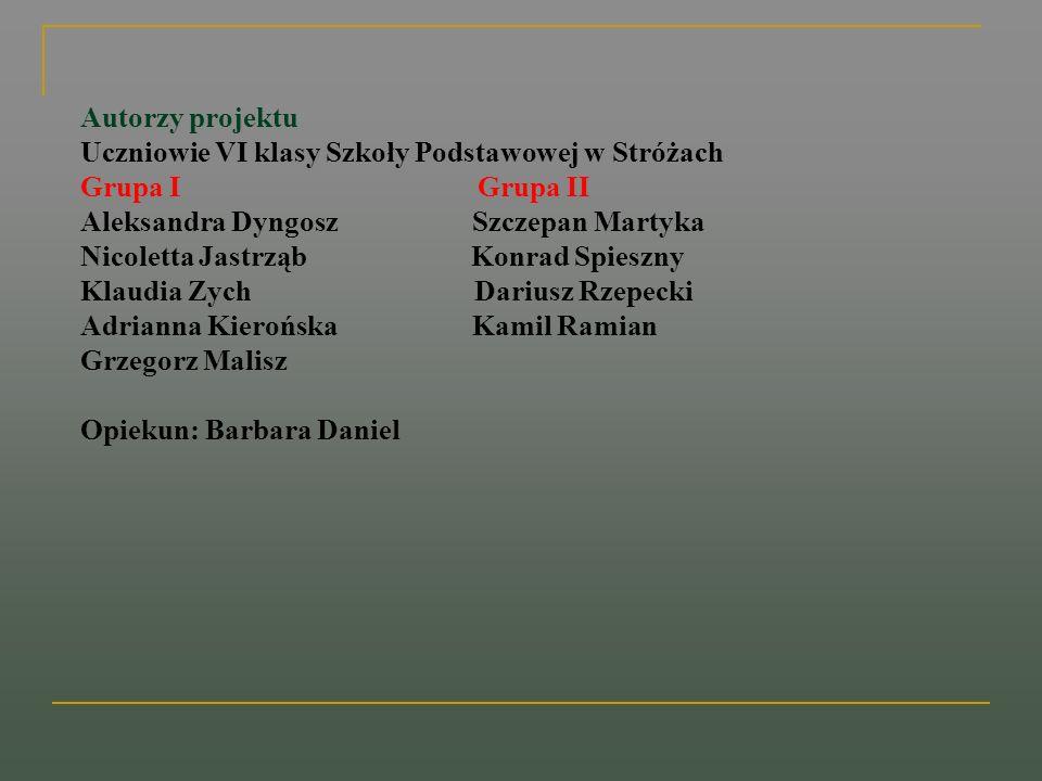 Autorzy projektuUczniowie VI klasy Szkoły Podstawowej w Stróżach. Grupa I Grupa II.
