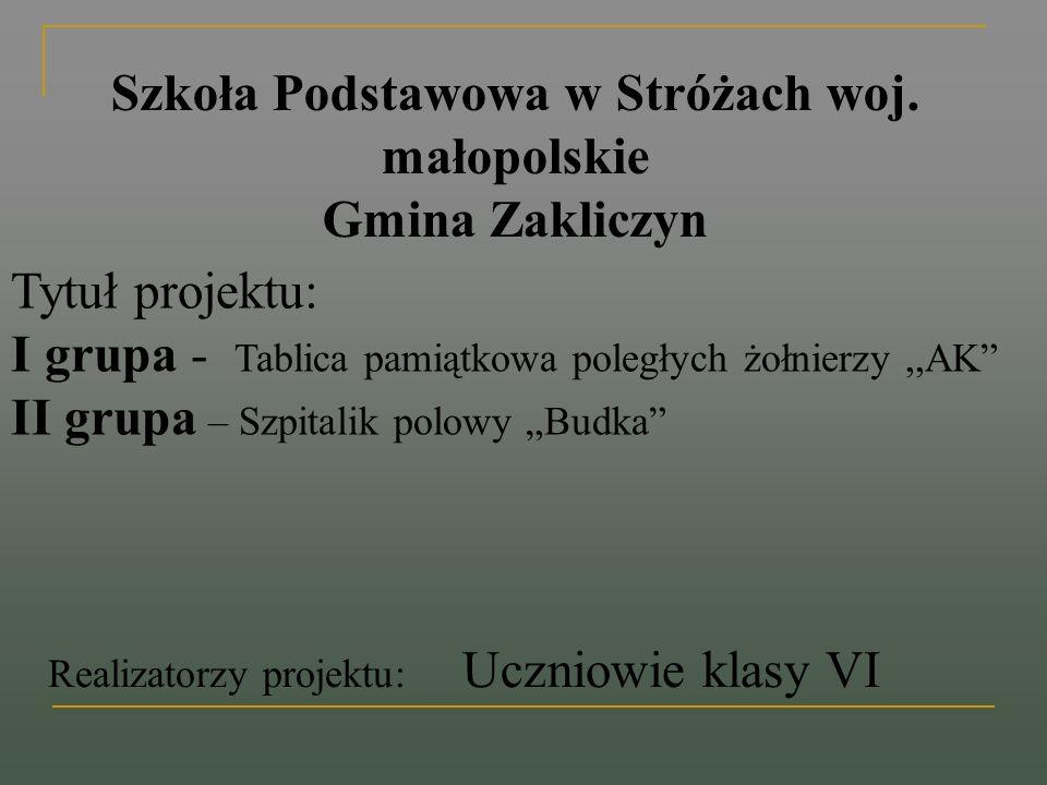 Szkoła Podstawowa w Stróżach woj. małopolskie Gmina Zakliczyn