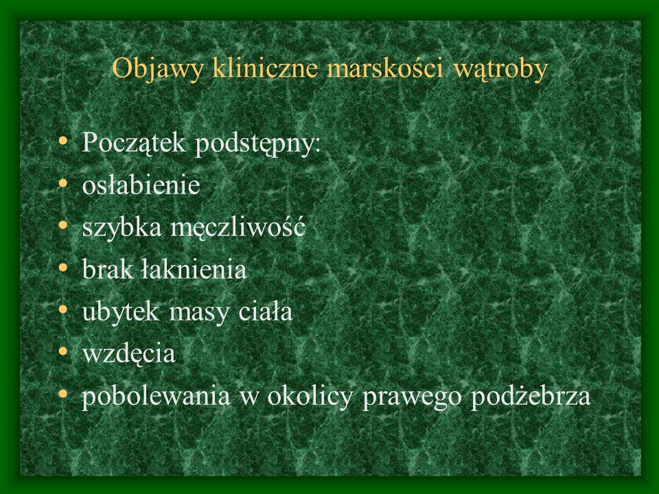 Objawy kliniczne marskości wątroby