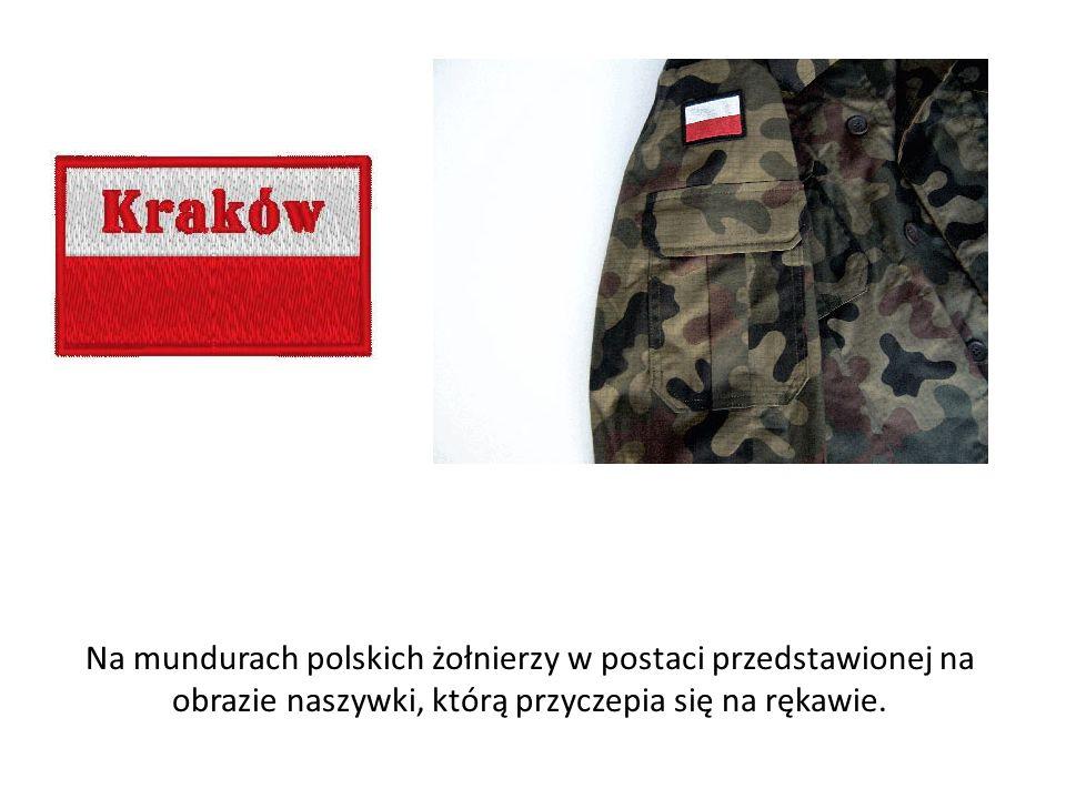 Na mundurach polskich żołnierzy w postaci przedstawionej na obrazie naszywki, którą przyczepia się na rękawie.