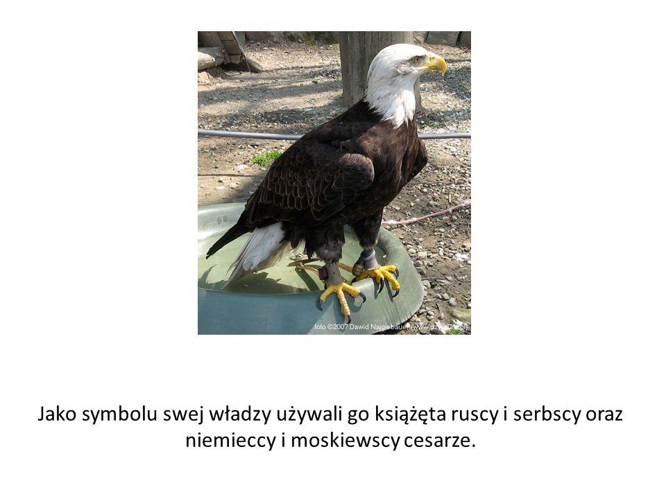 Jako symbolu swej władzy używali go książęta ruscy i serbscy oraz niemieccy i moskiewscy cesarze.
