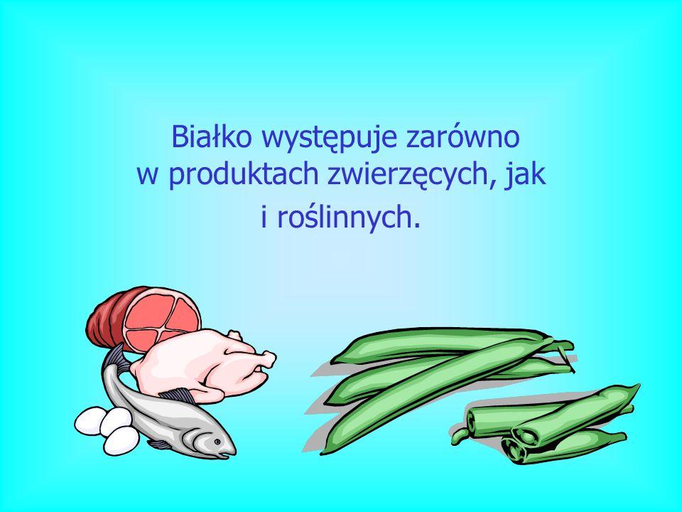 Białko występuje zarówno w produktach zwierzęcych, jak i roślinnych.