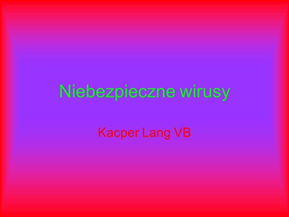 Niebezpieczne wirusy Kacper Lang VB