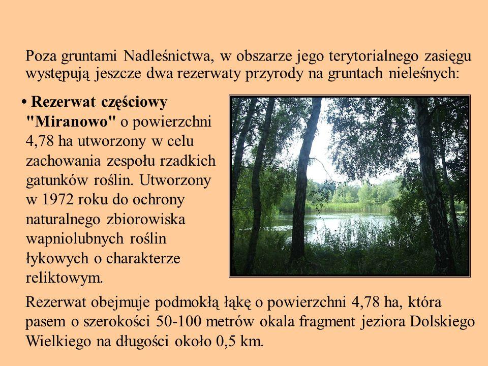 Poza gruntami Nadleśnictwa, w obszarze jego terytorialnego zasięgu występują jeszcze dwa rezerwaty przyrody na gruntach nieleśnych: