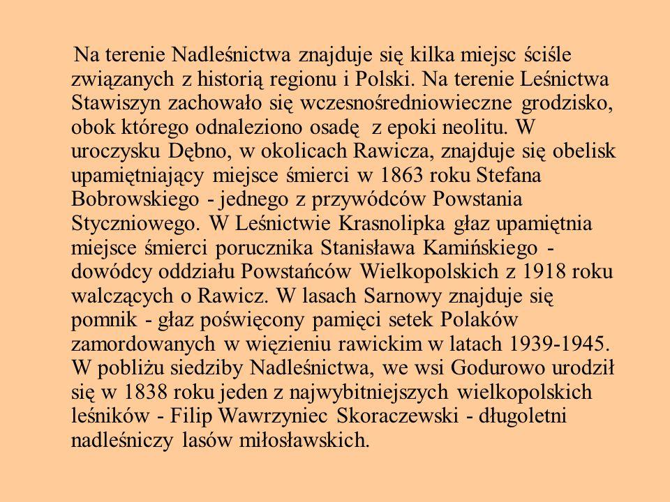 Na terenie Nadleśnictwa znajduje się kilka miejsc ściśle związanych z historią regionu i Polski.