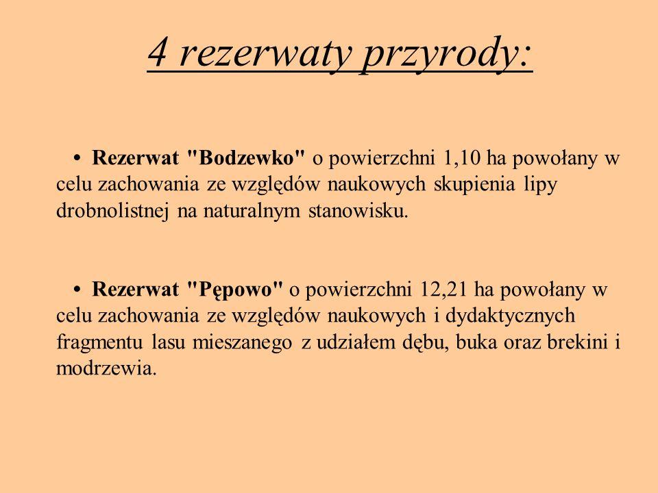 4 rezerwaty przyrody: