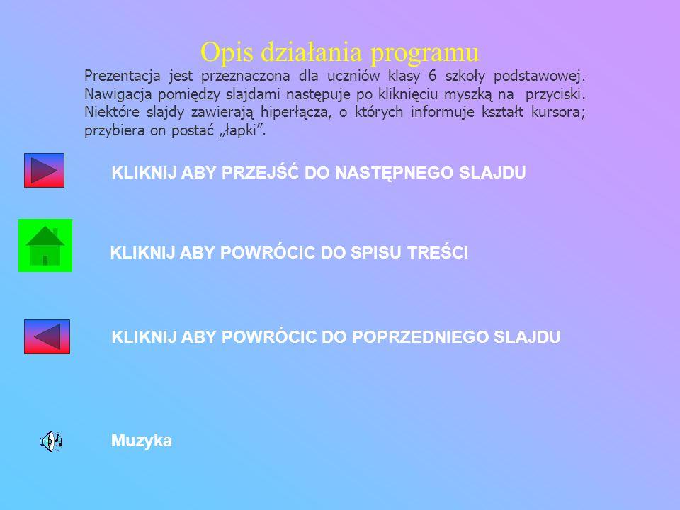 Opis działania programu