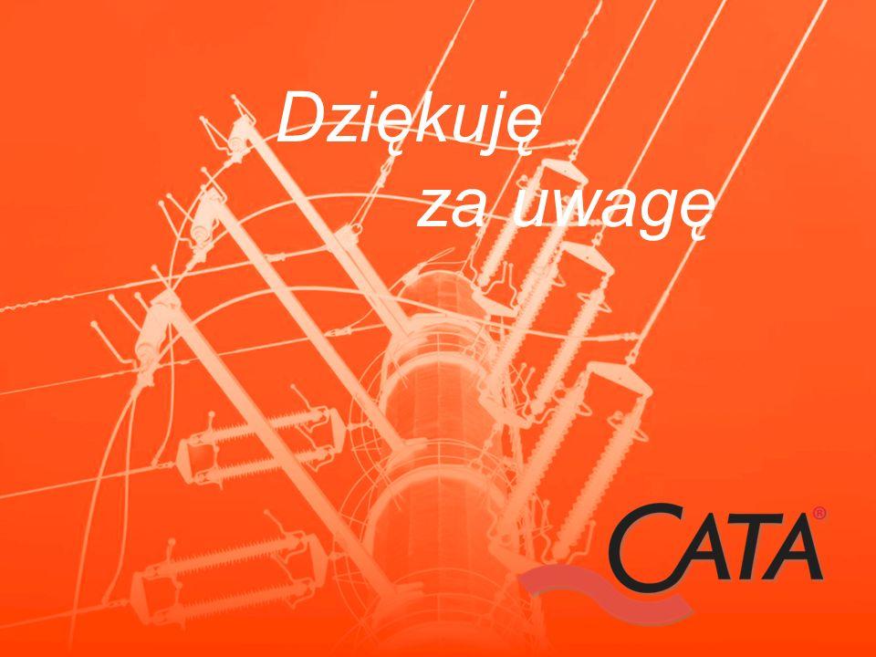 Dziękuję za uwagę Prelegent: Grzegorz Tomasik, grzegorz.tomasik@cata.eu.com