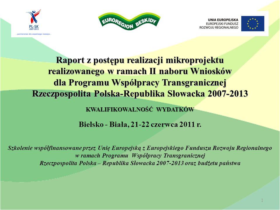Raport z postępu realizacji mikroprojektu