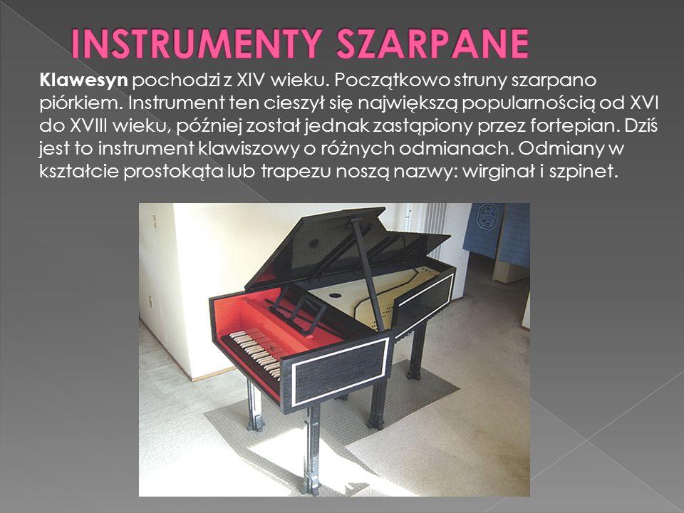 INSTRUMENTY SZARPANE