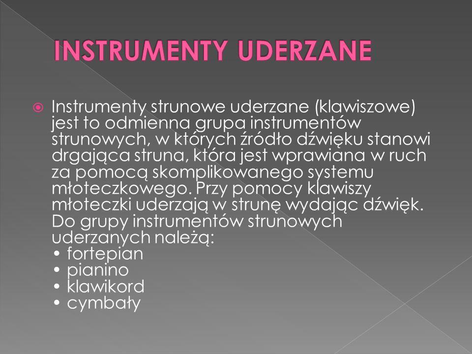 INSTRUMENTY UDERZANE