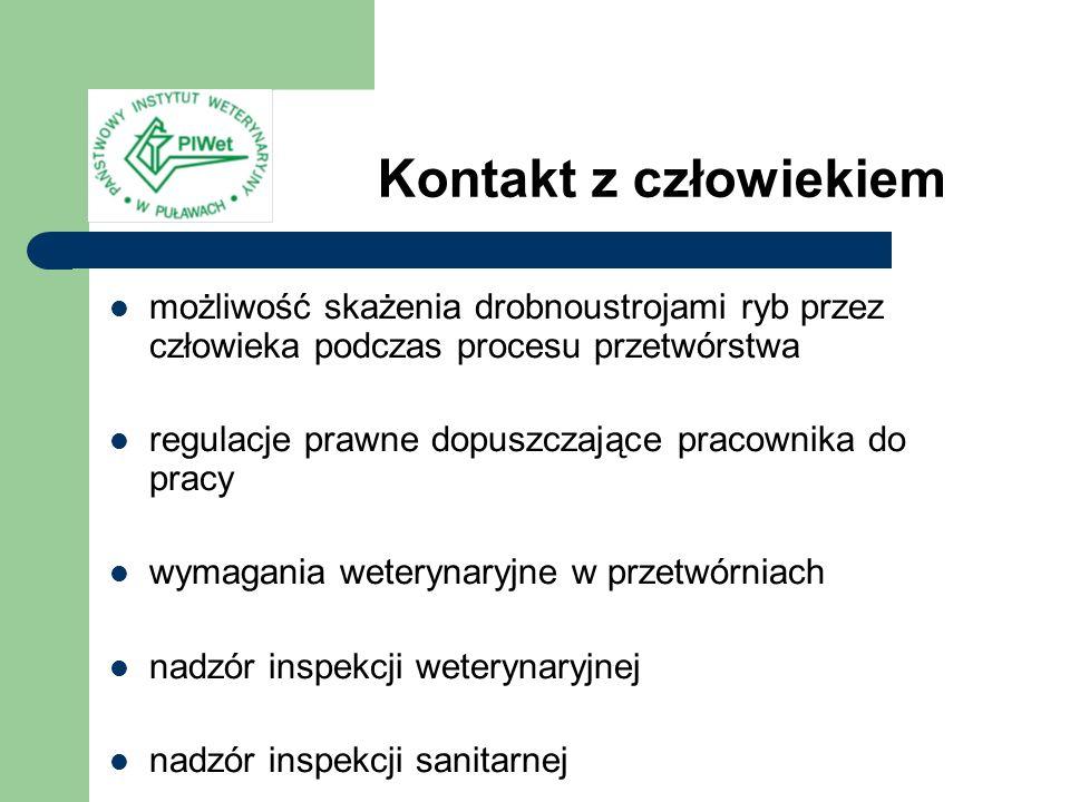 Kontakt z człowiekiem możliwość skażenia drobnoustrojami ryb przez człowieka podczas procesu przetwórstwa.