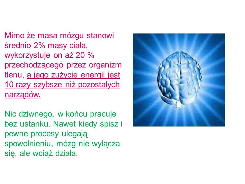 Mimo że masa mózgu stanowi średnio 2% masy ciała, wykorzystuje on aż 20 % przechodzącego przez organizm tlenu, a jego zużycie energii jest 10 razy szybsze niż pozostałych narządów.