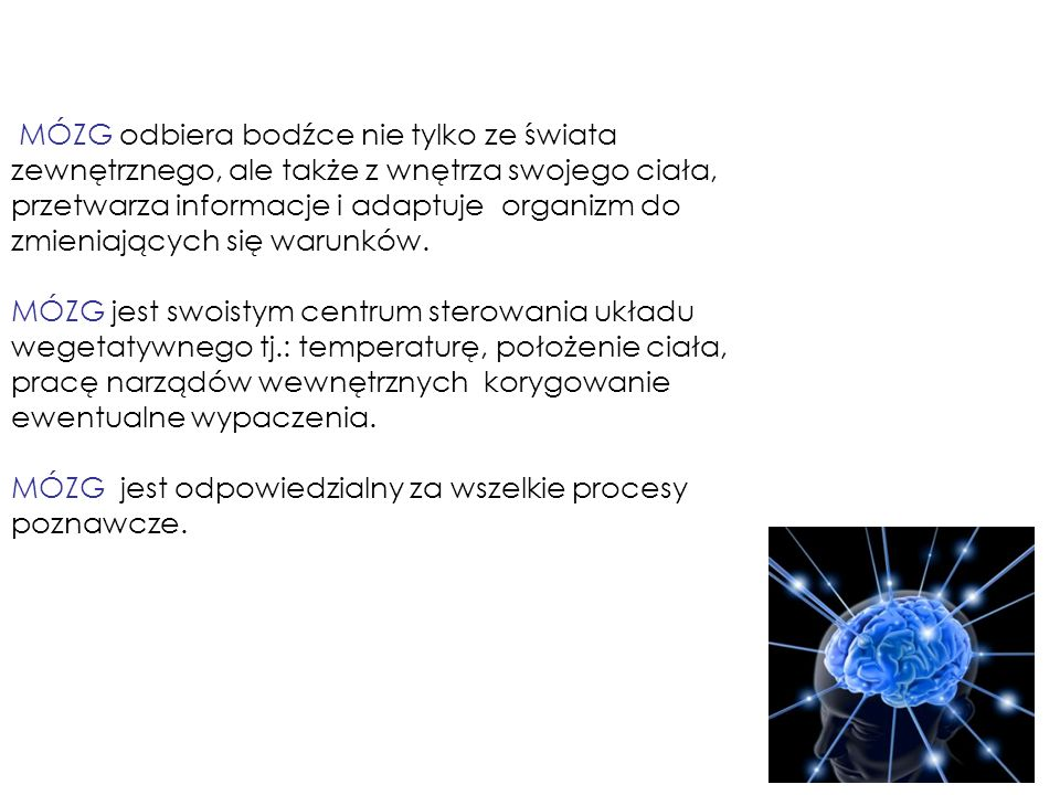 MÓZG odbiera bodźce nie tylko ze świata zewnętrznego, ale także z wnętrza swojego ciała,