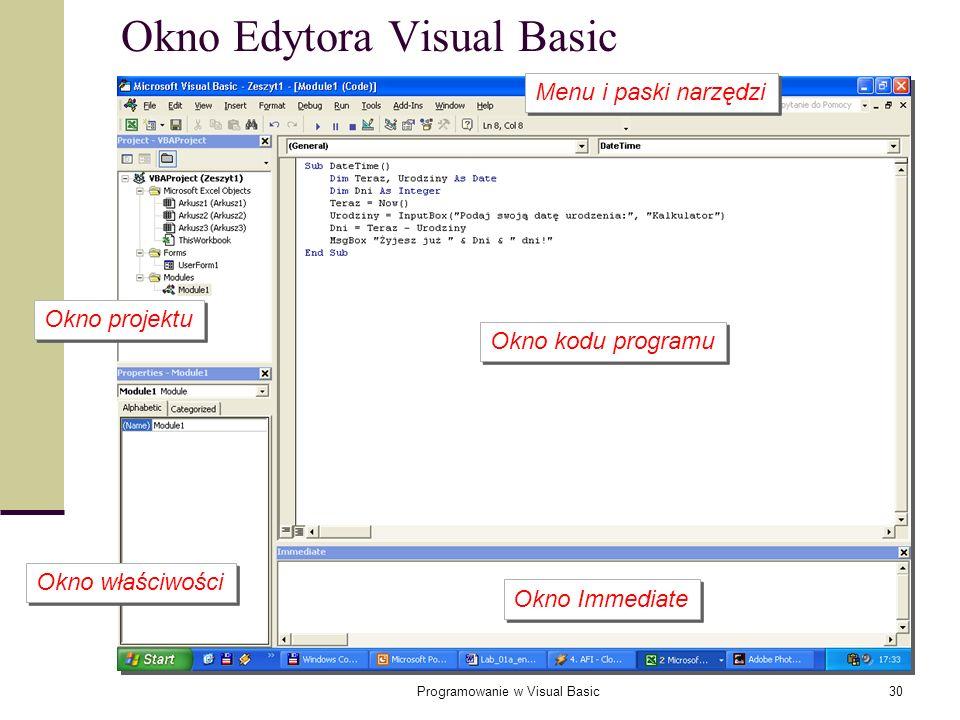 Okno Edytora Visual Basic
