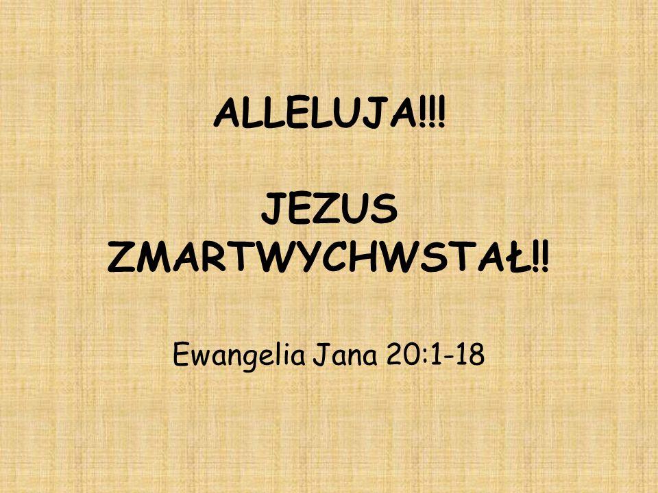 ALLELUJA!!! JEZUS ZMARTWYCHWSTAŁ!!
