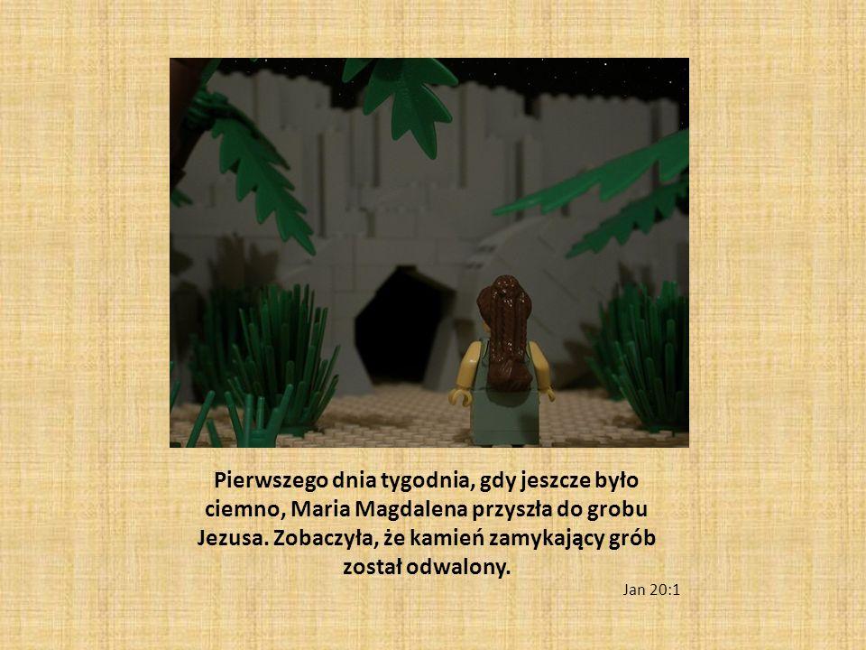 Pierwszego dnia tygodnia, gdy jeszcze było ciemno, Maria Magdalena przyszła do grobu Jezusa. Zobaczyła, że kamień zamykający grób został odwalony.