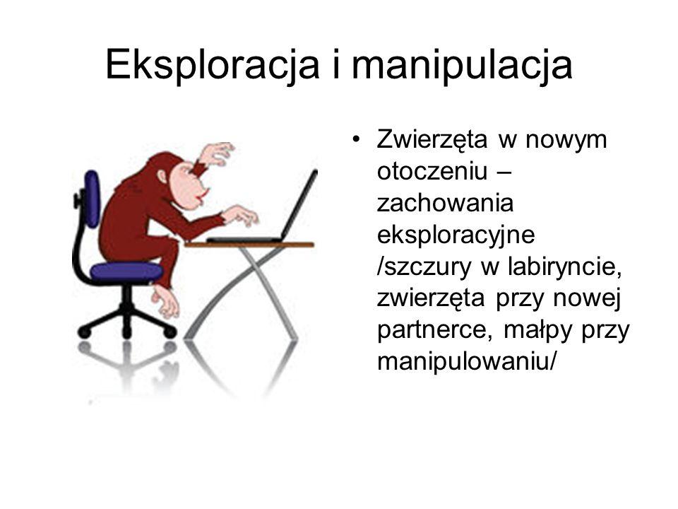Eksploracja i manipulacja