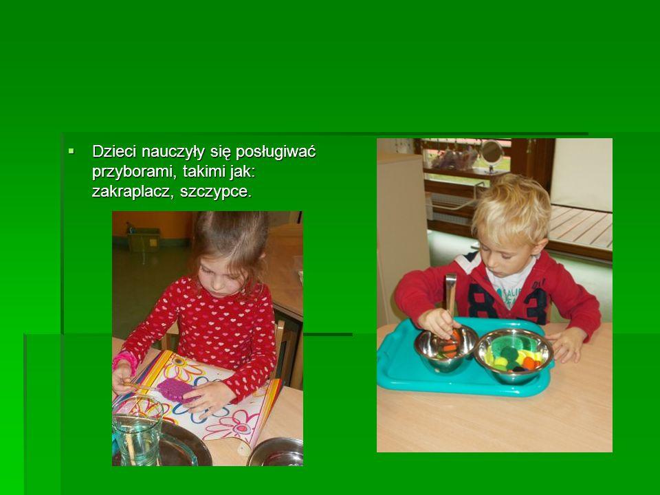 Dzieci nauczyły się posługiwać przyborami, takimi jak: zakraplacz, szczypce.