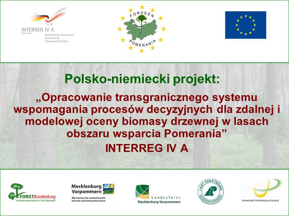 Polsko-niemiecki projekt: