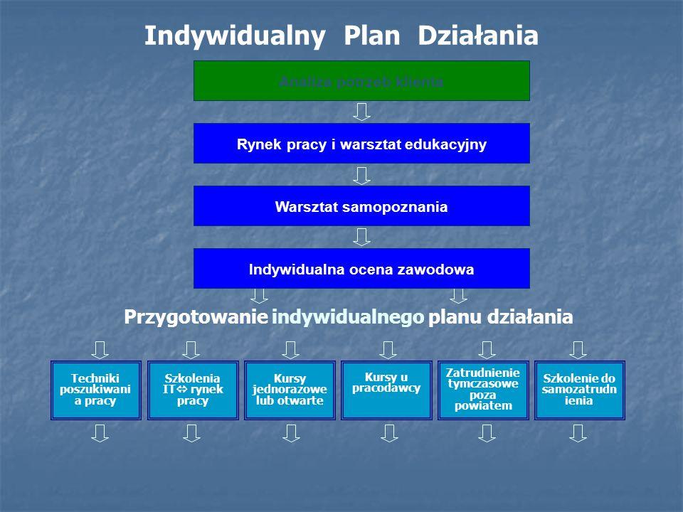 Indywidualny Plan Działania opis i schemat.