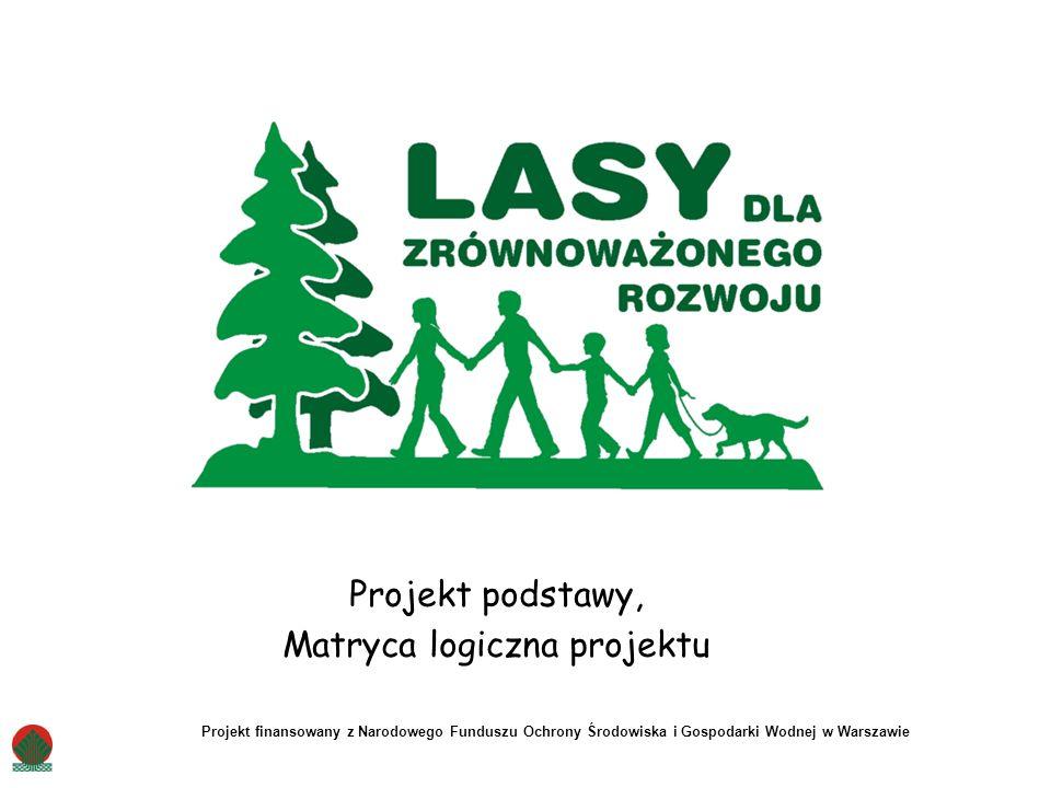 Projekt podstawy, Matryca logiczna projektu