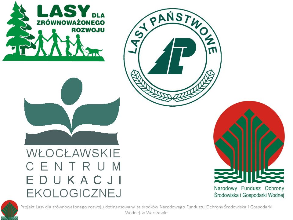 Projekt Lasy dla zrównoważonego rozwoju dofinansowany ze środków Narodowego Funduszu Ochrony Środowiska i Gospodarki Wodnej w Warszawie