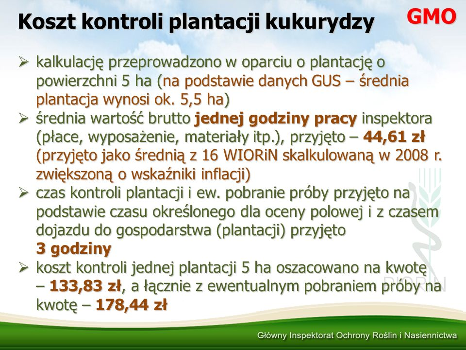 Koszt kontroli plantacji kukurydzy