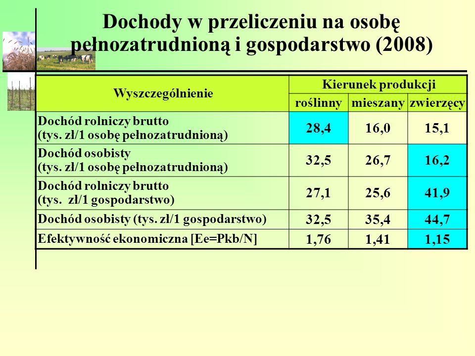 Dochody w przeliczeniu na osobę pełnozatrudnioną i gospodarstwo (2008)
