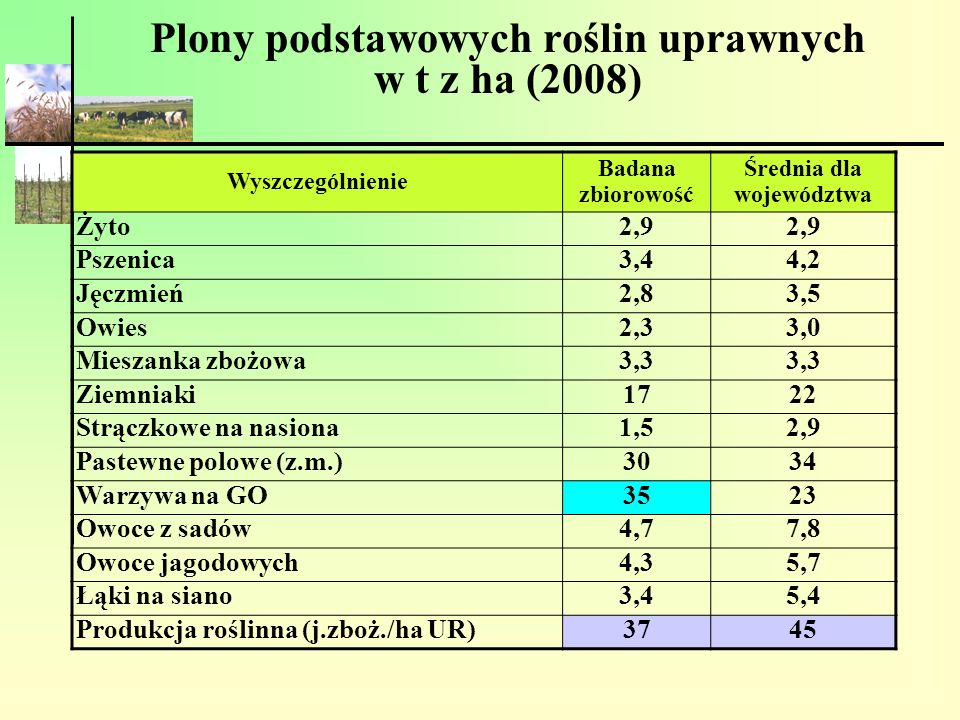 Plony podstawowych roślin uprawnych w t z ha (2008)