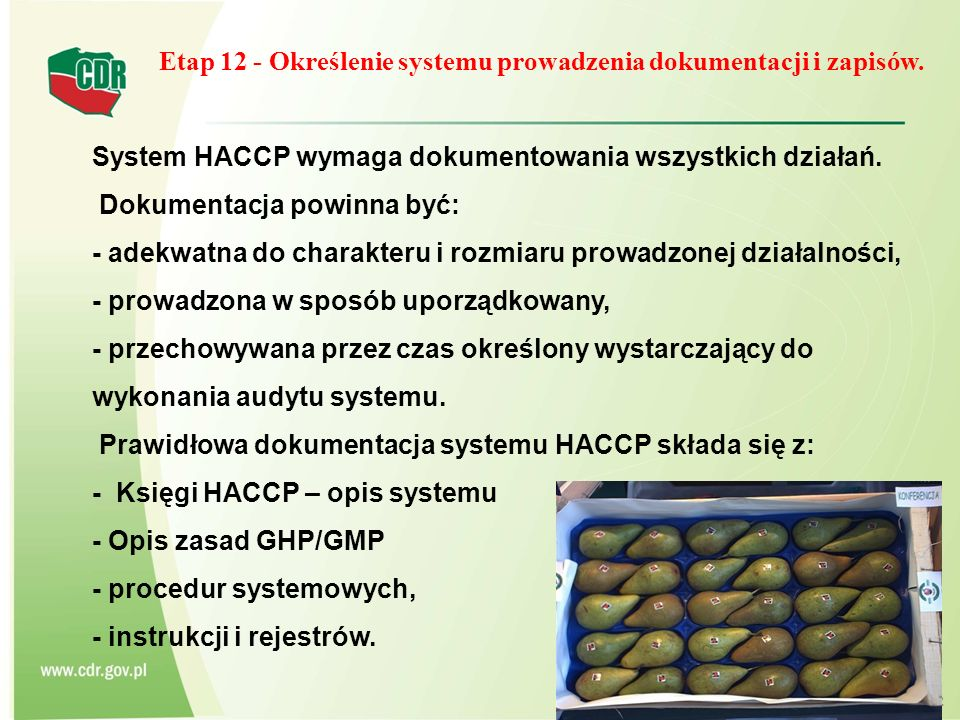 Etap 12 - Określenie systemu prowadzenia dokumentacji i zapisów.