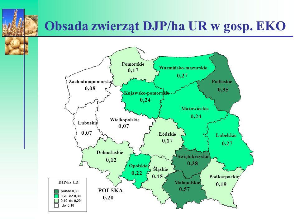 Obsada zwierząt DJP/ha UR w gosp. EKO
