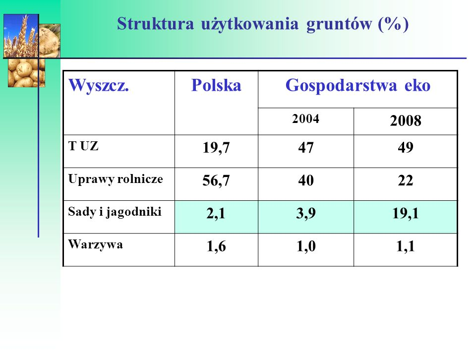 Struktura użytkowania gruntów (%)