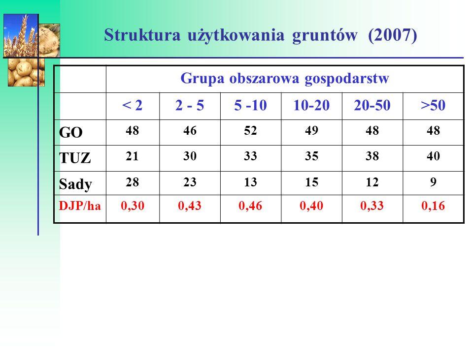 Struktura użytkowania gruntów (2007)