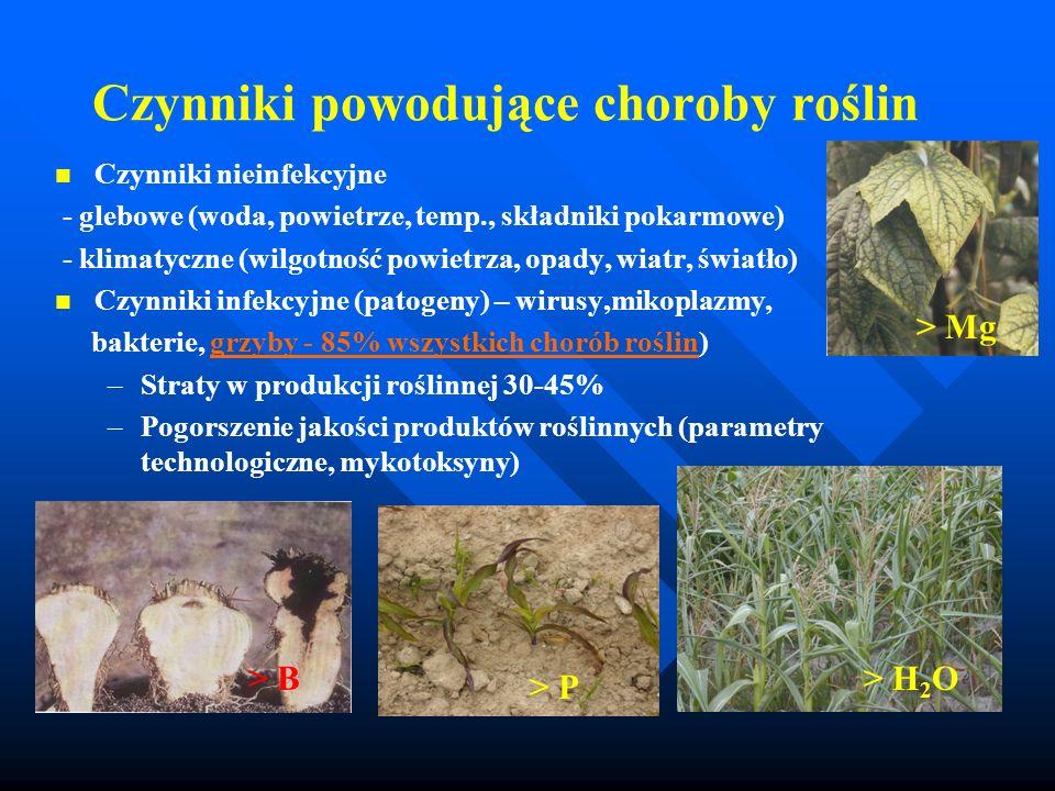 Czynniki powodujące choroby roślin