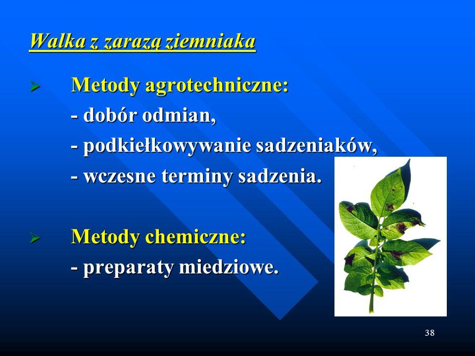 Walka z zarazą ziemniaka Metody agrotechniczne: - dobór odmian,