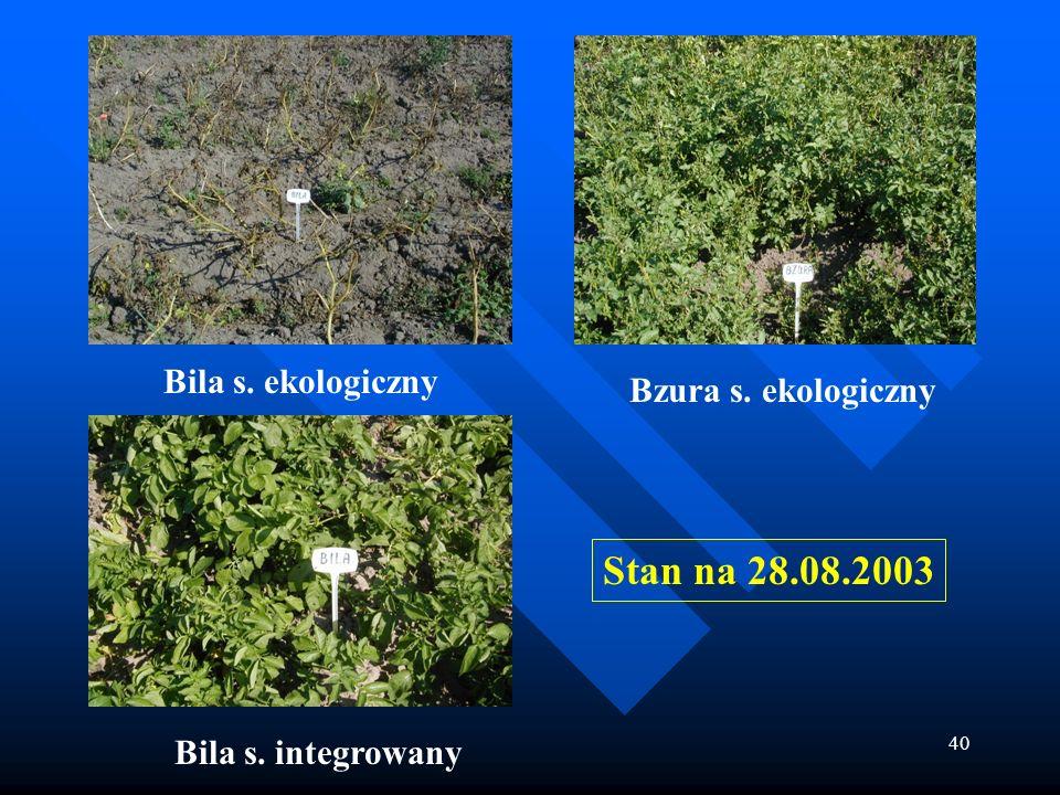 Stan na 28.08.2003 Bila s. ekologiczny Bzura s. ekologiczny