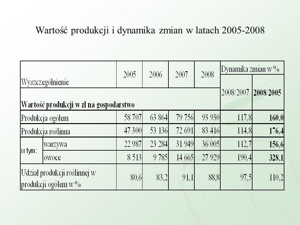 Wartość produkcji i dynamika zmian w latach 2005-2008