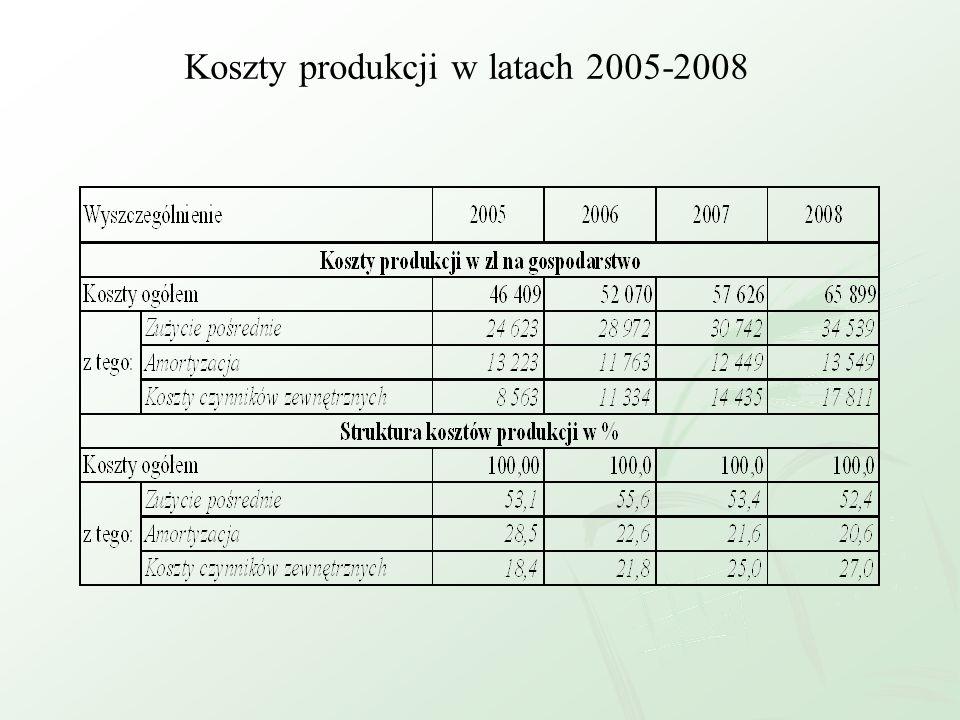 Koszty produkcji w latach 2005-2008