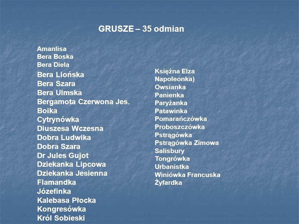 GRUSZE – 35 odmian Bera Liońska Bera Szara Bera Ulmska