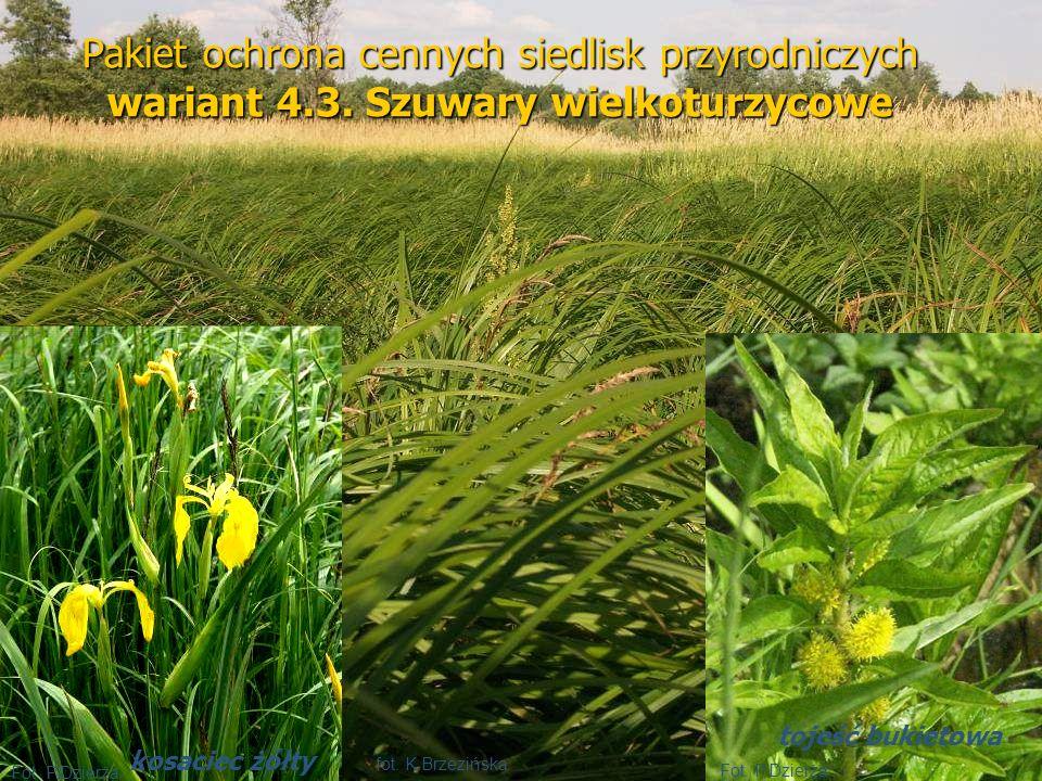 Pakiet ochrona cennych siedlisk przyrodniczych wariant 4. 3