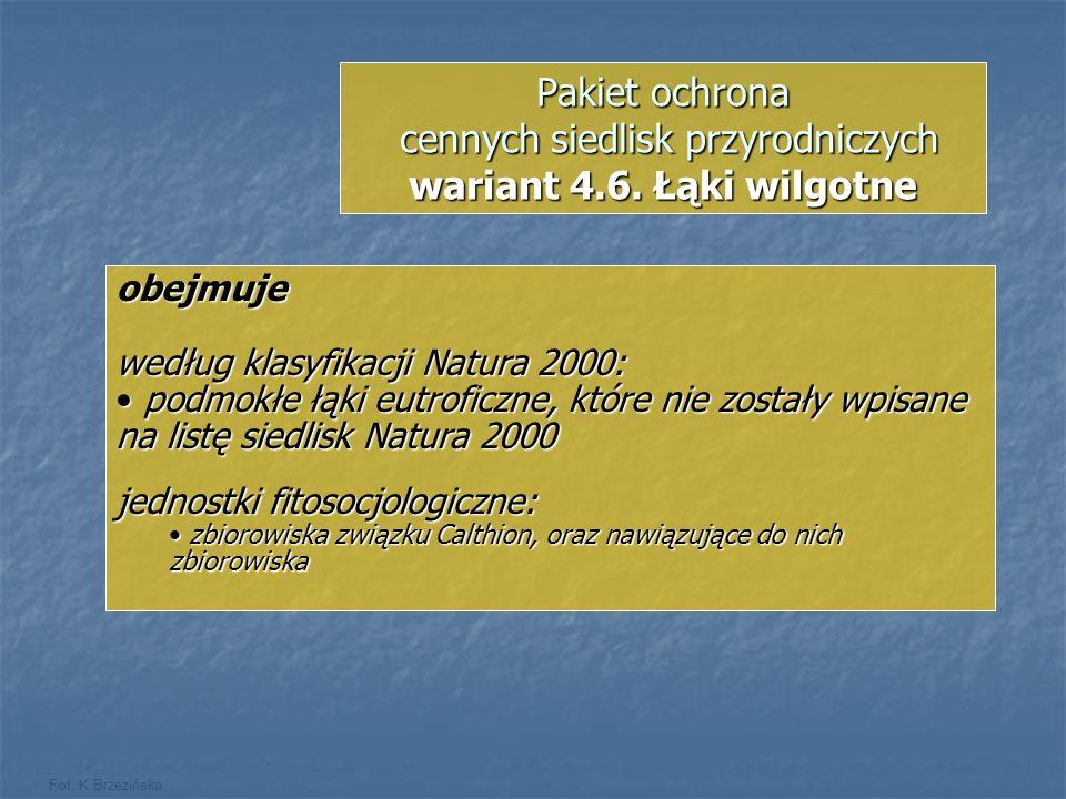 Pakiet ochrona cennych siedlisk przyrodniczych wariant 4. 6