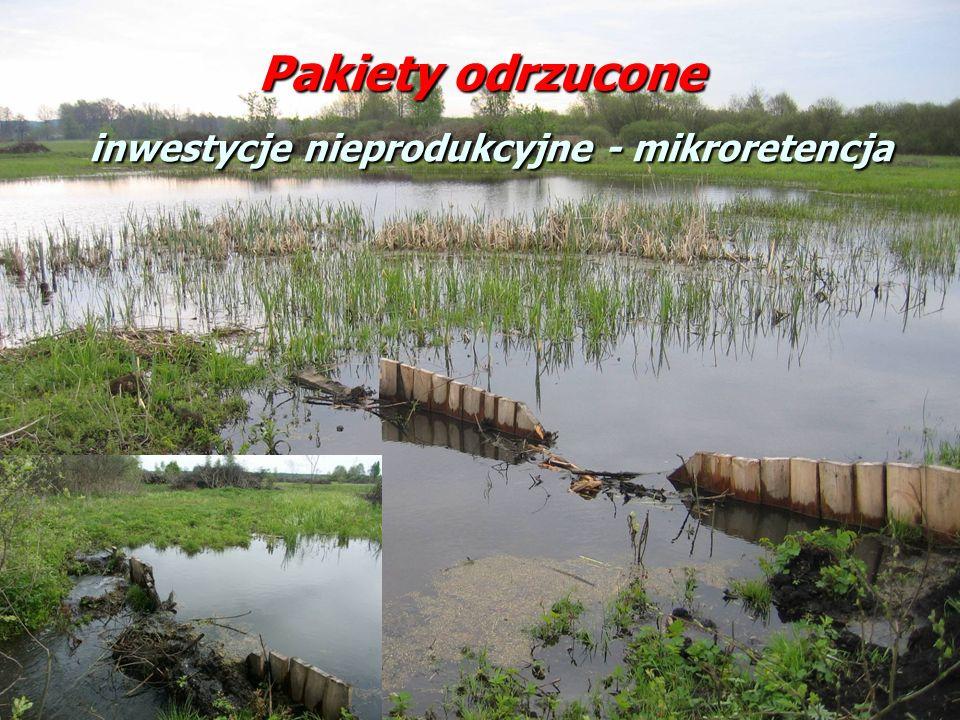 Pakiety odrzucone inwestycje nieprodukcyjne - mikroretencja