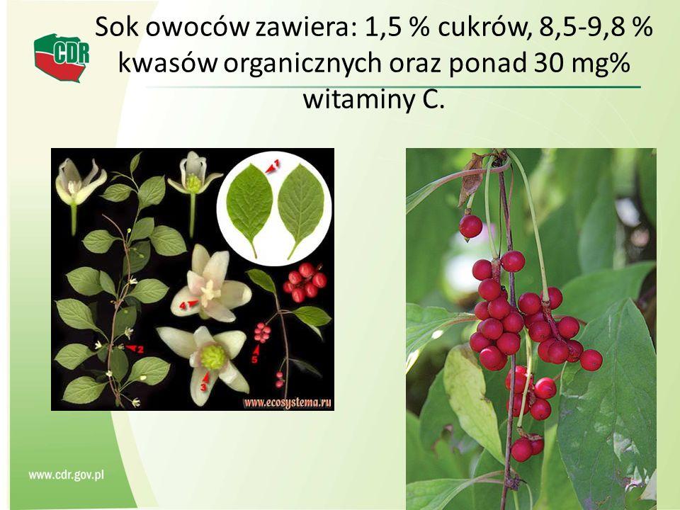Sok owoców zawiera: 1,5 % cukrów, 8,5-9,8 % kwasów organicznych oraz ponad 30 mg% witaminy C.