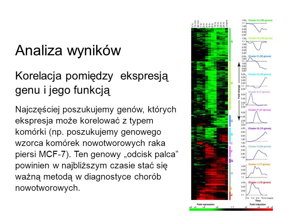 Analiza wyników Korelacja pomiędzy ekspresją genu i jego funkcją