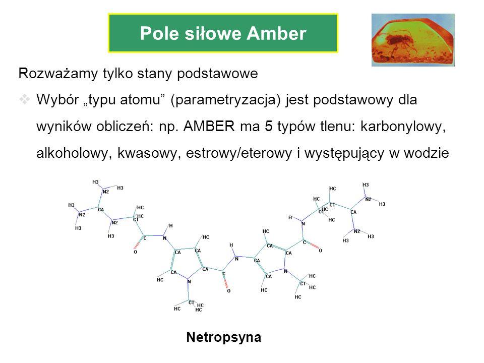 Pole siłowe Amber Rozważamy tylko stany podstawowe