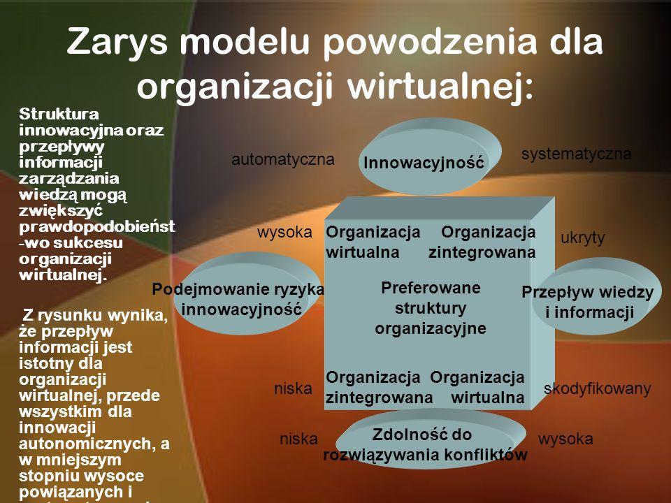 Zarys modelu powodzenia dla organizacji wirtualnej: