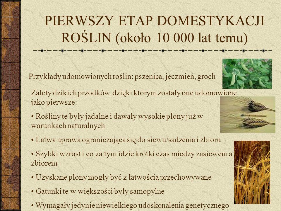 PIERWSZY ETAP DOMESTYKACJI ROŚLIN (około 10 000 lat temu)